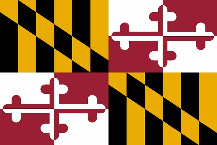 Image of Maryland State Flag Flying