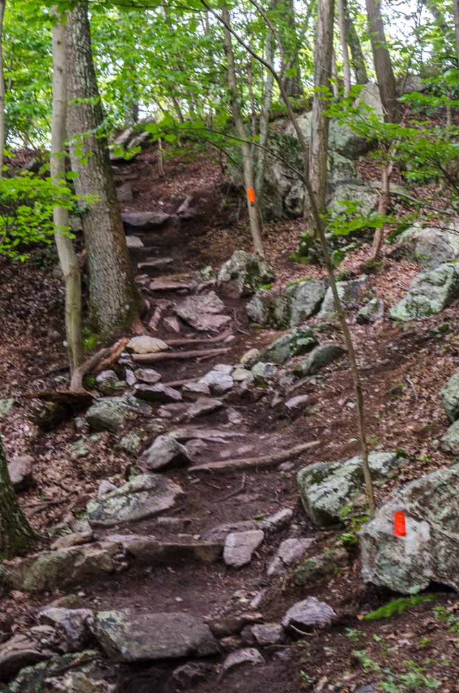 Ascending the Orange Trail to the Summit