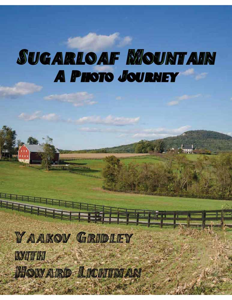 Proposed cover of picture book on Sugarloaf Mountain